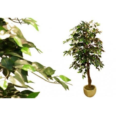 Umělá rostlina jako živá - Fíkus 190 cm