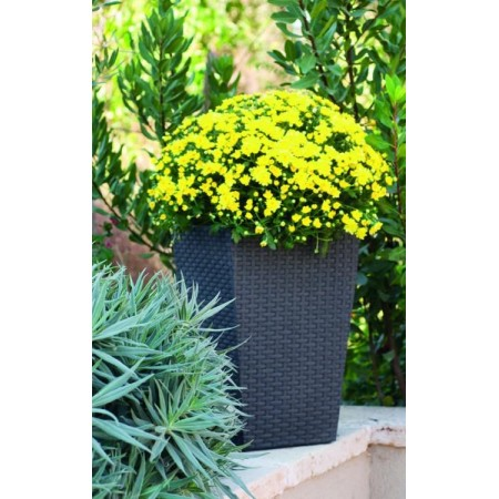 Větší okrasný květináč, ratanový vzhled, antracit, 44 cm