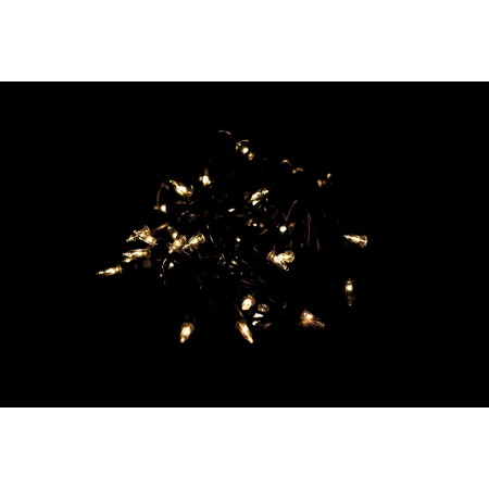 Světelný řetěz se žárovkami, vnitřní, čiré žárovky, 9,8 m