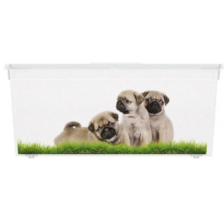 Úložný plastový box s víkem, průhledný + potisk psi, 27 L