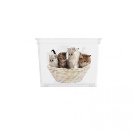 Úložný plastový box s víkem, průhledný + potisk kočky, 27 L