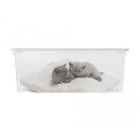 Úložný plastový box s víkem, průhledný + potisk kočky, 11 L