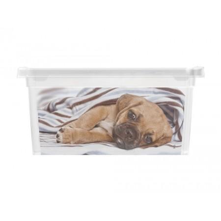 Úložný plastový box s víkem, průhledný + potisk psi, 2 L