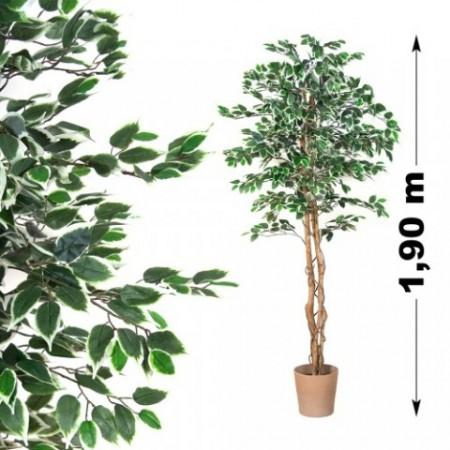 Umělá rostlina jako živá, Fíkus vysoký 190 cm