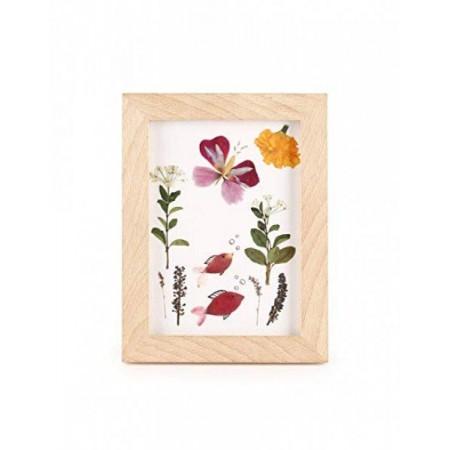 Rámeček (obrázek) na lisované květiny