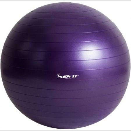 Gymnastický a rehabilitační míč včetně pumpičky, 65 cm, fialový