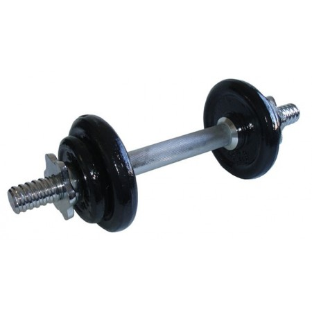 Jednoruční nakládací činka, kovová závaží, 5,5 kg