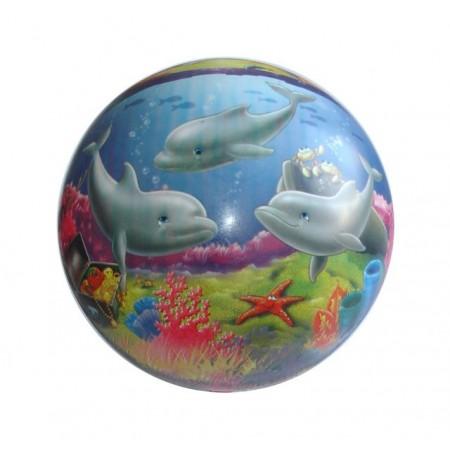 Dětský hrací míč s potiskem 23 cm