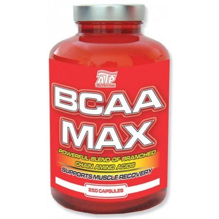 Fitness výživa BCAA MAX 250 tablet