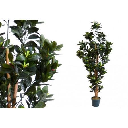 Umělá květina jako živá - kamélie s poupaty, 150 cm