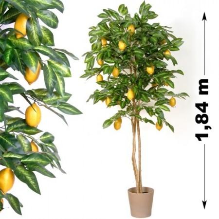 Umělá rostlina jako živá s plody - citrusovník 184 cm